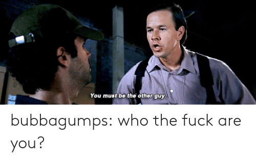 Tumblr, Blog, and Fuck: You must be the other guy bubbagumps:  who the fuck are you?