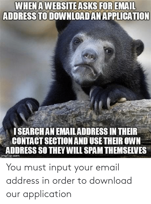 Email: You must input your email address in order to download our application