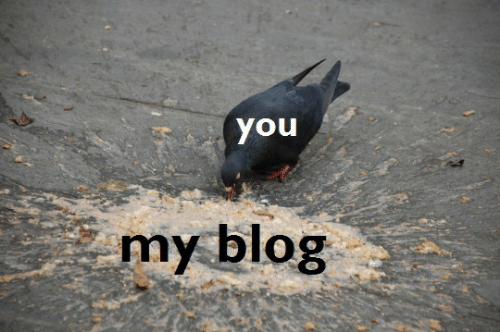 Blog, You, and You My: you  my blog
