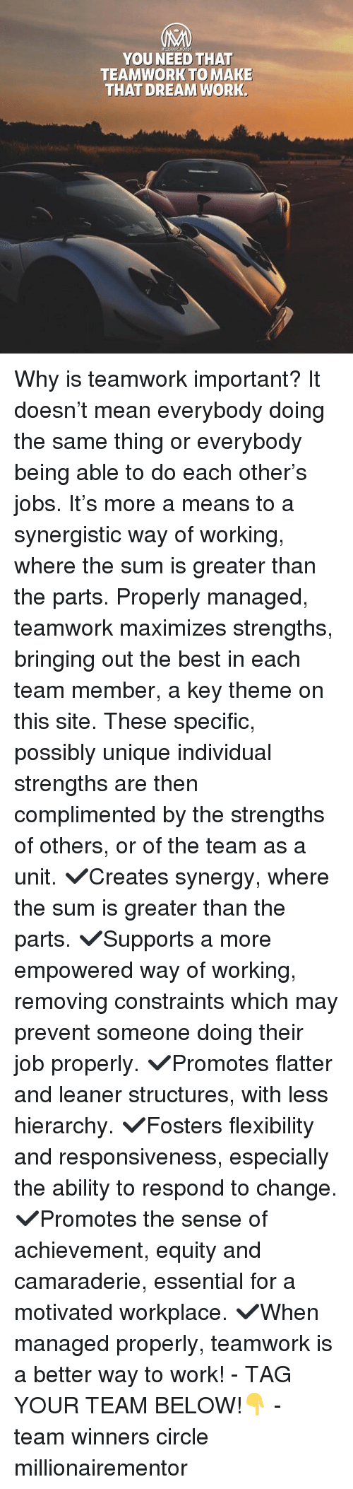 Memes, Work, and Best: YOU NEED THAT  TEAMWORK TO MAKE  THAT DREAM WORK Why is teamwork important? It doesn't mean everybody doing the same thing or everybody being able to do each other's jobs. It's more a means to a synergistic way of working, where the sum is greater than the parts. Properly managed, teamwork maximizes strengths, bringing out the best in each team member, a key theme on this site. These specific, possibly unique individual strengths are then complimented by the strengths of others, or of the team as a unit. ✔️Creates synergy, where the sum is greater than the parts. ✔️Supports a more empowered way of working, removing constraints which may prevent someone doing their job properly. ✔️Promotes flatter and leaner structures, with less hierarchy. ✔️Fosters flexibility and responsiveness, especially the ability to respond to change. ✔️Promotes the sense of achievement, equity and camaraderie, essential for a motivated workplace. ✔️When managed properly, teamwork is a better way to work! - TAG YOUR TEAM BELOW!👇 - team winners circle millionairementor