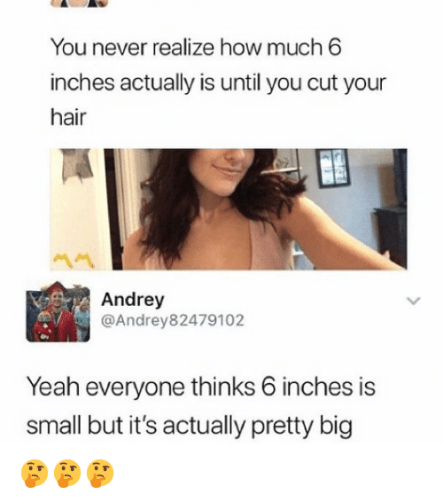 Memes, Yeah, and Hair: You never realize how much 6  inches actually is until you cut your  hair  Andrey  @Andrey82479102  Yeah everyone thinks 6 inches is  small but it's actually pretty big 🤔🤔🤔
