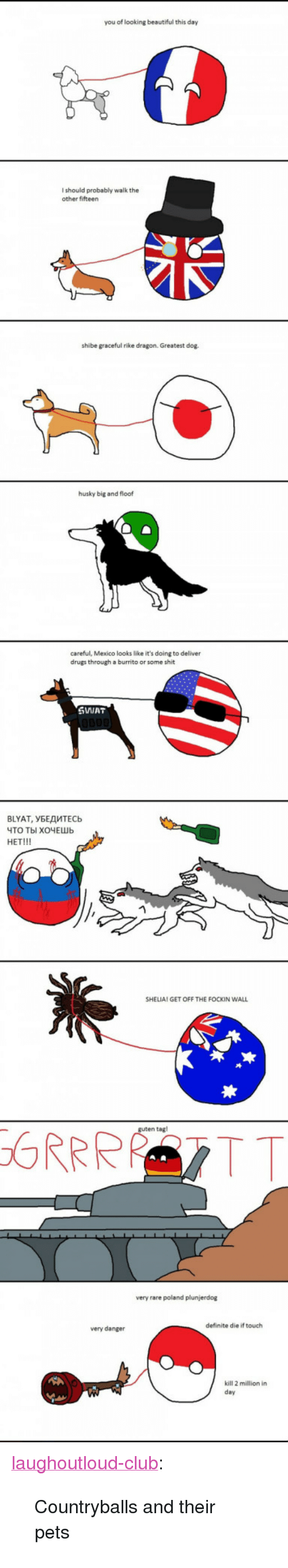 """shibe: you of looking beautiful this day  I should probably walk the  other fifteen  shibe graceful rike dragon. Greatest dog.  husky big and floof  careful, Mexico looks like it's doing to deliver  drugs through a burrito or some shit  SWIAT  BLYAT, УБЕДИТЕСЬ  ЧТО ТЫ ХОЧЕШЬ  HET!!!  SHELIA! GET OFF THE FOCKIN WALI  n tagl  very rare poland plunjerdog  definite die if touch  very danger  kill 2 million in  day <p><a href=""""http://laughoutloud-club.tumblr.com/post/158565404742/countryballs-and-their-pets"""" class=""""tumblr_blog"""">laughoutloud-club</a>:</p>  <blockquote><p>Countryballs and their pets</p></blockquote>"""