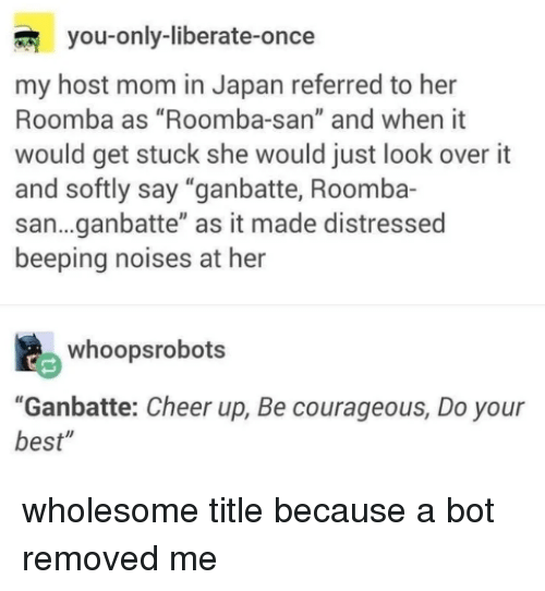 """Roomba, Best, and Japan: you-only-liberate-once  my host mom in Japan referred to her  Roomba as """"Roomba-san"""" and when it  would get stuck she would just look over it  and softly say """"ganbatte, Roomba-  san...ganbatte"""" as it made distressed  beeping noises at her  whoopsrobots  """"Ganbatte: Cheer up, Be courageous, Do your  best"""""""
