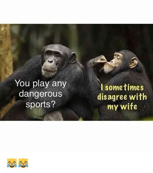 Memes, Sports, and Wife: You play any  dangerous  sports?  I sometimes  disagree with  my wife 😹😹