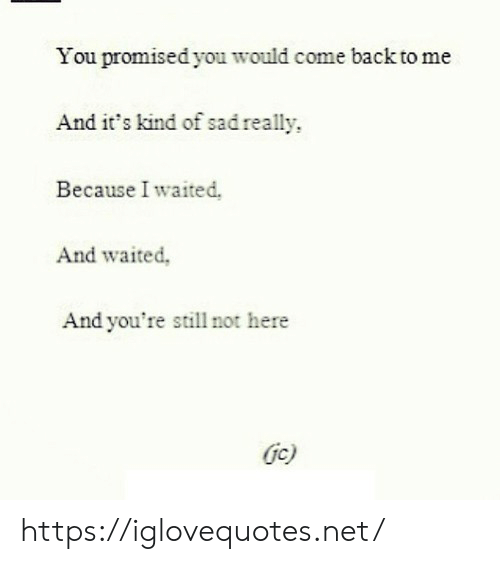 Sad, Back, and Net: You promised you would come back to me  And it's kind of sad really  Because I waited.  And waited,  And you're still not here  Gc) https://iglovequotes.net/