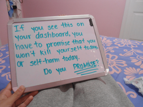 You Wont: you see this on  Your dashboard, you  have to promise that you  wont kiit yourset4  or self-harm today  Mi  Do you PROMİSE?