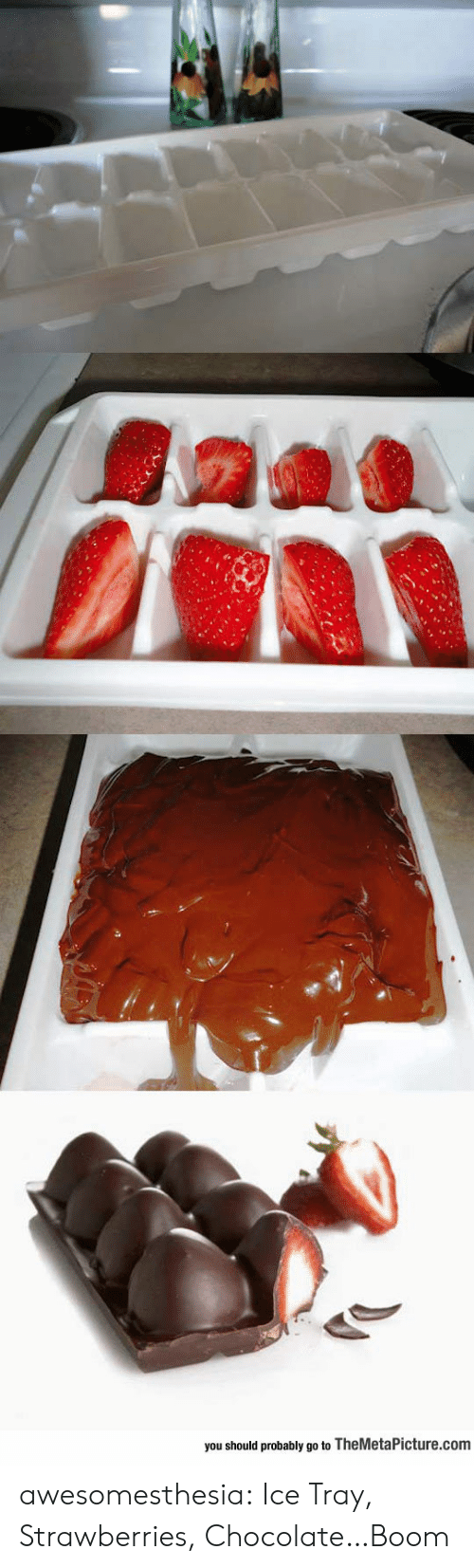 Strawberries: you should probably go to TheMetaPicture.com awesomesthesia:  Ice Tray, Strawberries, Chocolate…Boom