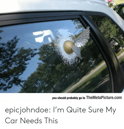 Tumblr, Blog, and Quite: you should probably go to TheMetaPicture.com epicjohndoe:  I'm Quite Sure My Car Needs This