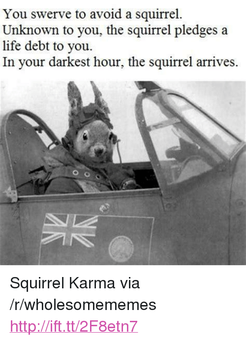 """Life, Http, and Karma: You swerve to avoid a squirrel.  Unknown to you, the squirrel pledges a  life debt to you.  In your darkest hour, the squirrel arrives. <p>Squirrel Karma via /r/wholesomememes <a href=""""http://ift.tt/2F8etn7"""">http://ift.tt/2F8etn7</a></p>"""