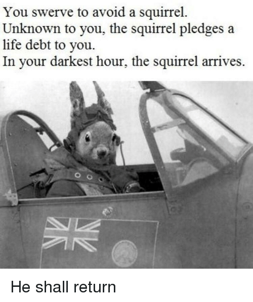 Life, Squirrel, and Darkest Hour: You swerve to avoid a squirrel.  Unknown to you, the squirrel pledges a  life debt to you.  In your darkest hour, the squirrel arrives. He shall return