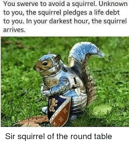 Life, Squirrel, and Table: You swerve to avoid a squirrel. Unknown  to you, the squirrel pledges a life debt  to you. In your darkest hour, the squirrel  arrives. Sir squirrel of the round table