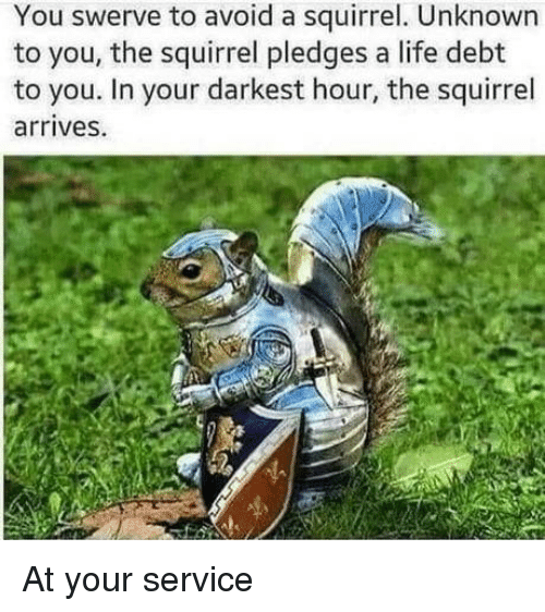 Life, Squirrel, and Darkest Hour: You swerve to avoid a squirrel. Unknown  to you, the squirrel pledges a life debt  to you. In your darkest hour, the squirrel  arrives. At your service