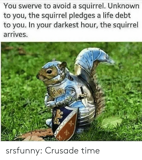 Life, Tumblr, and Blog: You swerve to avoid a squirrel. Unknown  to you, the squirrel pledges a life debt  to you. In your darkest hour, the squirrel  arrives. srsfunny:  Crusade time