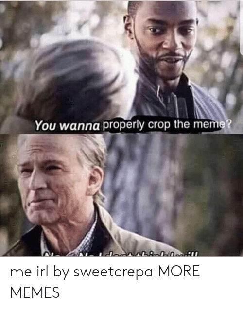 crop: You wanna properly crop the meme? me irl by sweetcrepa MORE MEMES