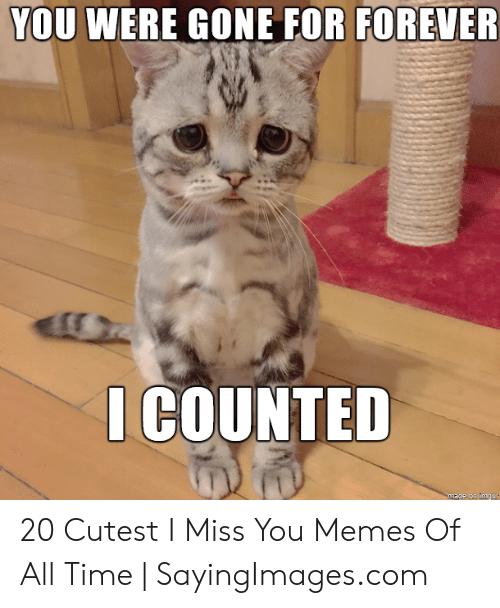 I Will Miss You Guys By Williams Meme Center