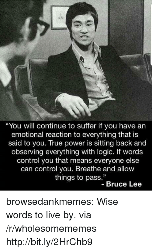"""Logic, True, and Tumblr: """"You will continue to suffer if you have an  emotional reaction to everything that is  said to you. True power is sitting back and  observing everything with logic. If words  control you that means everyone else  can control you. Breathe and allow  things to pass.""""  -Bruce Lee browsedankmemes:  Wise words to live by. via /r/wholesomememes http://bit.ly/2HrChb9"""