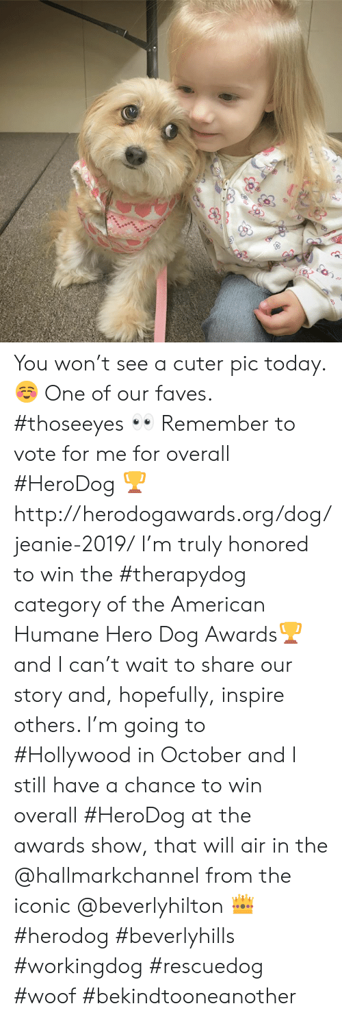 Hallmarkchannel: You won't see a cuter pic today. ☺️  One of our faves. #thoseeyes 👀 Remember to vote for me for overall #HeroDog 🏆 http://herodogawards.org/dog/jeanie-2019/  I'm truly honored to win the #therapydog category of the American Humane Hero Dog Awards🏆 and I can't wait to share our story and, hopefully, inspire others.  I'm going to #Hollywood in October and I still have a chance to win overall #HeroDog at the awards show, that will air in the @hallmarkchannel from the iconic @beverlyhilton 👑  #herodog #beverlyhills #workingdog #rescuedog #woof #bekindtooneanother