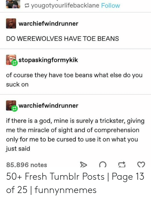 beans: yougotyourlifebacklane Follow  warchiefwindrunner  DO WEREWOLVES HAVE TOE BEANS  stopaskingformykik  of course they have toe beans what else do you  suck on  warchiefwindrunner  if there is a god, mine is surely a trickster, giving  me the miracle of sight and of comprehension  only for me to be cursed to use it on what you  just said  85,896 notes 50+ Fresh Tumblr Posts | Page 13 of 25 | funnynmemes