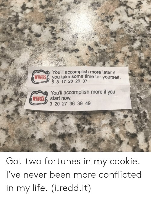 Life, Time, and Never: You'll accomplish more later if  5 8 17 28 29 37  You'll accomplish more if you  3 20 27 36 39 49  WINGS2 you take some time for yourself  WINGSstart now Got two fortunes in my cookie. I've never been more conflicted in my life. (i.redd.it)