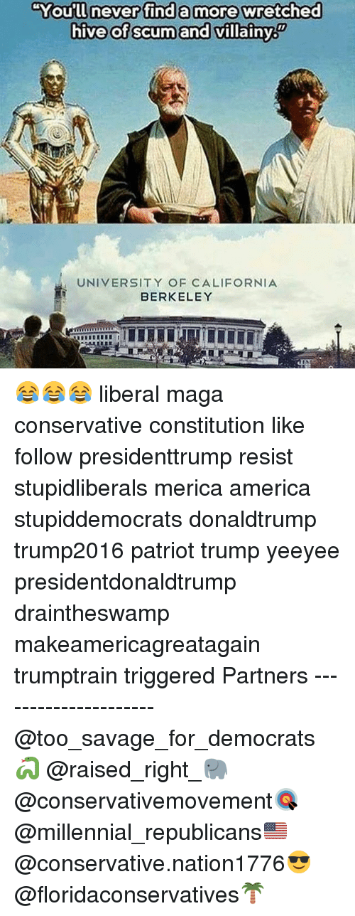 """America, Memes, and Savage: """"You'll never find a more wretched  hive of scumand villainy  You'll neverifind a more&wretched  hive of scum and villainy  UNIVERSITY OF CALIFORNIA  BERKELEY 😂😂😂 liberal maga conservative constitution like follow presidenttrump resist stupidliberals merica america stupiddemocrats donaldtrump trump2016 patriot trump yeeyee presidentdonaldtrump draintheswamp makeamericagreatagain trumptrain triggered Partners --------------------- @too_savage_for_democrats🐍 @raised_right_🐘 @conservativemovement🎯 @millennial_republicans🇺🇸 @conservative.nation1776😎 @floridaconservatives🌴"""