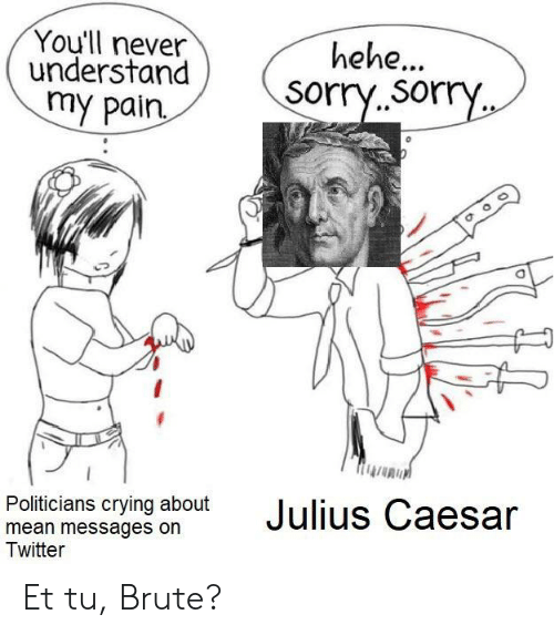 Crying, Reddit, and Sorry: You'll never  understand  my pain  hehe...  sorry.sorry  Politicians crying about  mean messages on  Twitter  Julius Caesar Et tu, Brute?