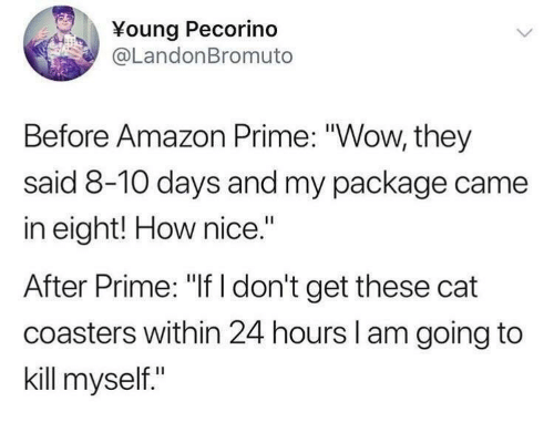 "Amazon, Amazon Prime, and Wow: Young Pecorind  @LandonBromuto  Before Amazon Prime: ""Wow, they  said 8-10 days and my package came  in eight! How nice.""  After Prime: ""If I don't get these cat  coasters within 24 hours l am going to  kill myself."""