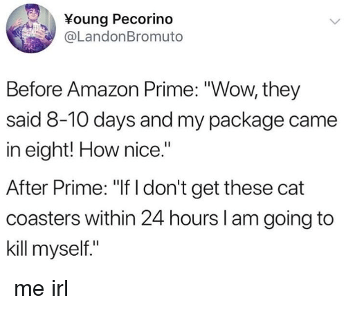 "Amazon, Amazon Prime, and Wow: Young Pecorino  @LandonBromuto  Before Amazon Prime: ""Wow, they  said 8-10 days and my package came  in eight! How nice.""  After Prime: ""If I don't get these cat  coasters within 24 hours I am going to  kill myself."" me irl"
