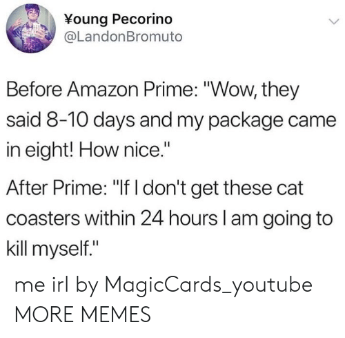 "Amazon, Amazon Prime, and Dank: Young Pecorino  @LandonBromuto  Before Amazon Prime: ""Wow, they  said 8-10 days and my package came  in eight! How nice.""  After Prime: ""If I don't get these cat  coasters within 24 hours I am going to  kill myself."" me irl by MagicCards_youtube MORE MEMES"