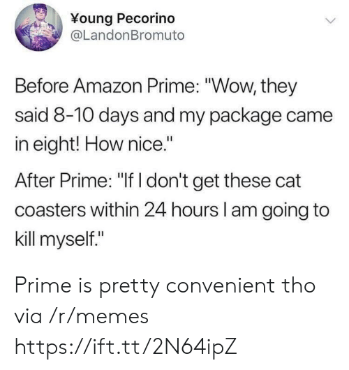 "Amazon, Amazon Prime, and Memes: Young Pecorino  @LandonBromuto  Before Amazon Prime: ""Wow, they  said 8-10 days and my package came  in eight! How nice.""  After Prime: ""If I don't get these cat  coasters within 24 hours l am going to  kill myself."" Prime is pretty convenient tho via /r/memes https://ift.tt/2N64ipZ"