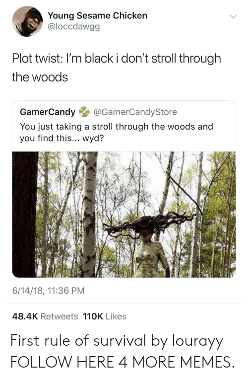 Dank, Memes, and Target: Young Sesame Chicken  @loccdawgg  Plot twist: I'm black i don't stroll through  the woods  GamerCandy@GamerCandyStore  You just taking a stroll through the woods and  you find this... wyd?  6/14/18, 11:36 PM  48.4K Retweets 110K Likes First rule of survival by lourayy FOLLOW HERE 4 MORE MEMES.