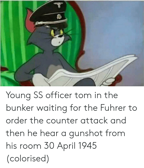 fuhrer: Young SS officer tom in the bunker waiting for the Fuhrer to order the counter attack and then he hear a gunshot from his room 30 April 1945 (colorised)
