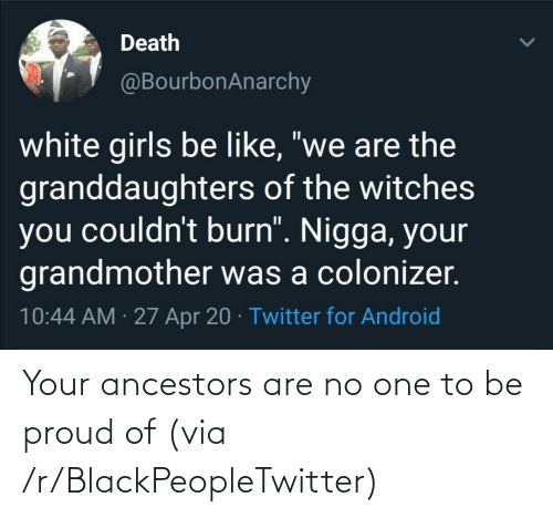 Be Proud: Your ancestors are no one to be proud of (via /r/BlackPeopleTwitter)