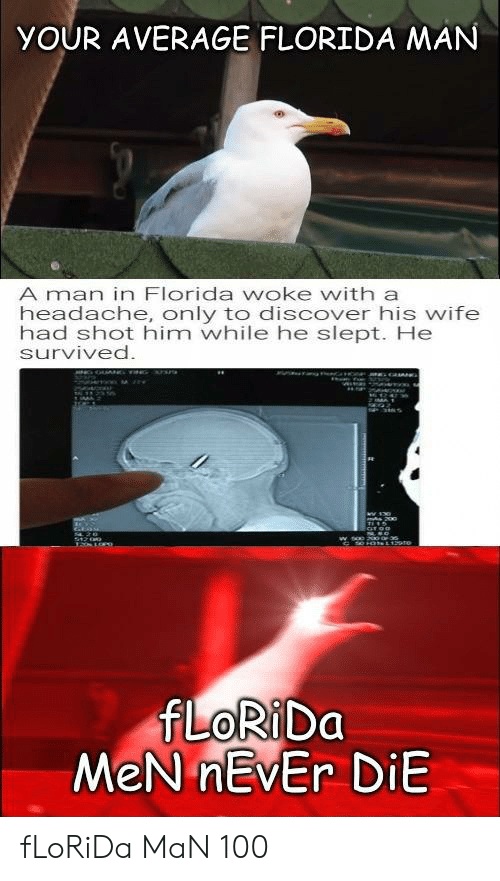 Florida Man, Discover, and Florida: YOUR AVERAGE FLORIDA MAN  A man in Florida woke with a  headache, only to discover his wife  had shot him while he slept. He  survived.  200  S1200  FLORIDA  MeN nEvEr DiE fLoRiDa MaN 100