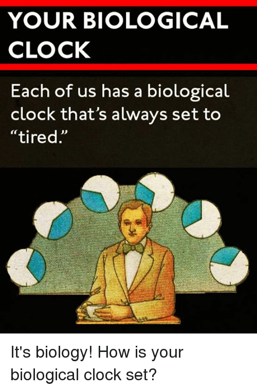 """Biological Clock: YOUR BIOLOGICAL  CLOCK  Each of us has a biological  """"tired It's biology!  How is your biological clock set?"""