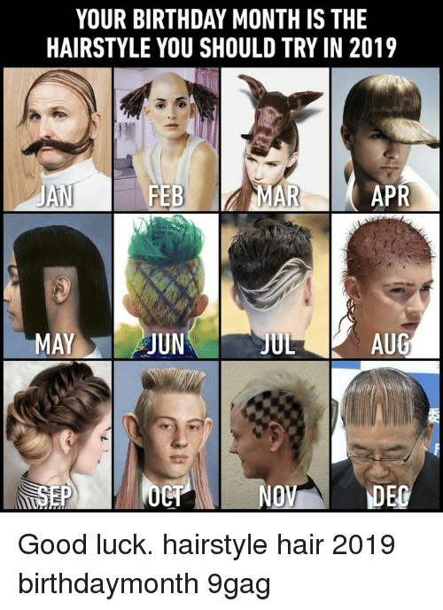 9gag, Birthday, and Memes: YOUR BIRTHDAY MONTH IS THE  HAIRSTYLE YOU SHOULD TRY IN 2019  JAN  FEBMAR  APR  MAYJUN  JUL  AUG  NO Good luck.⠀ hairstyle hair 2019 birthdaymonth 9gag