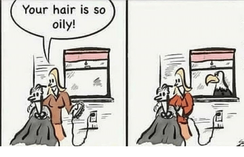 Memes, Hair, and 🤖: Your hair is so  oily!