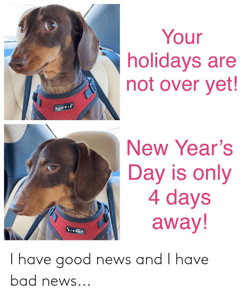 Your Holidays Are Not Over Yet Puppia New Year S Day Is Only 4 Days Away I Have Good News And I Have Bad News Bad Meme On Awwmemes Com