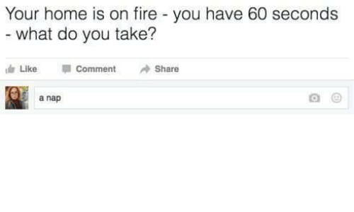 Commenter: Your home is on fire - you have 60 seconds  what do you take?  Like  Comment  Share  5 a nap