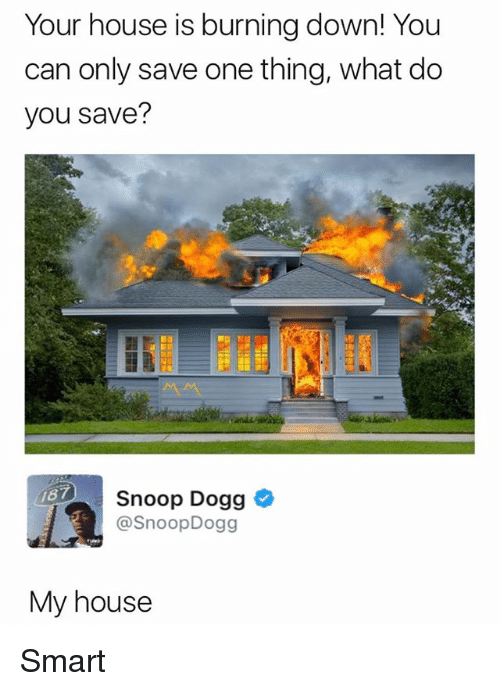 Smarts: Your house is burning down! You  can only save one thing, what do  you save?  Snoop Dogg *  @SnoopDogg  87  My house Smart