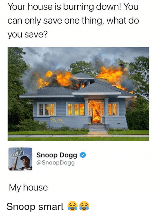 Smarts: Your house is burning down! You  can only save one thing, what do  you save?  187  Snoop Dogg  @SnoopDogg  My house Snoop smart 😂😂