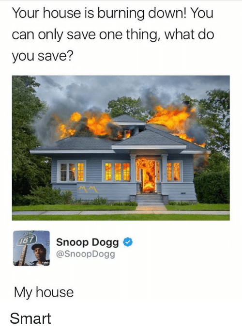 Smarts: Your house is burning down! You  can only save one thing, what do  you save?  187  Snoop Dogg  @SnoopDogg  My house Smart