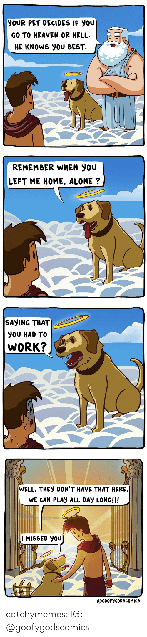 Here We: YOUR PET DECIDES IF YOU  GO TO HEAVEN OR HELL.  HE KNOWS YOU BEST.   REMEMBER WHEN YOU  LEFT ME HOME, ALONE ?   SAYING THAT  YOU HAD TO  WORK?   WELL, THEY DON'T HAVE THAT HERE,  WE CAN PLAY ALL DAY LONG!!!  I MISSED YOU  @GOOFYGODSCOMICS catchymemes:  IG: @goofygodscomics