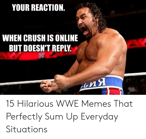 Hilarious Wwe: YOUR REACTION  WHEN CRUSH IS ONLINE  BUT DOESN'T REPLY 15 Hilarious WWE Memes That Perfectly Sum Up Everyday Situations