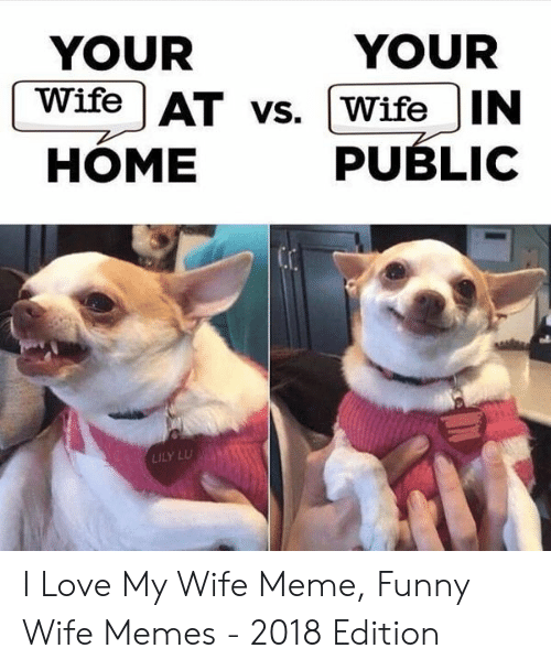 Love My Wife Meme: YOUR  YOUR  Wife AT vs. [WifeIN  HÓME PUBLIC  ILY LU I Love My Wife Meme, Funny Wife Memes - 2018 Edition