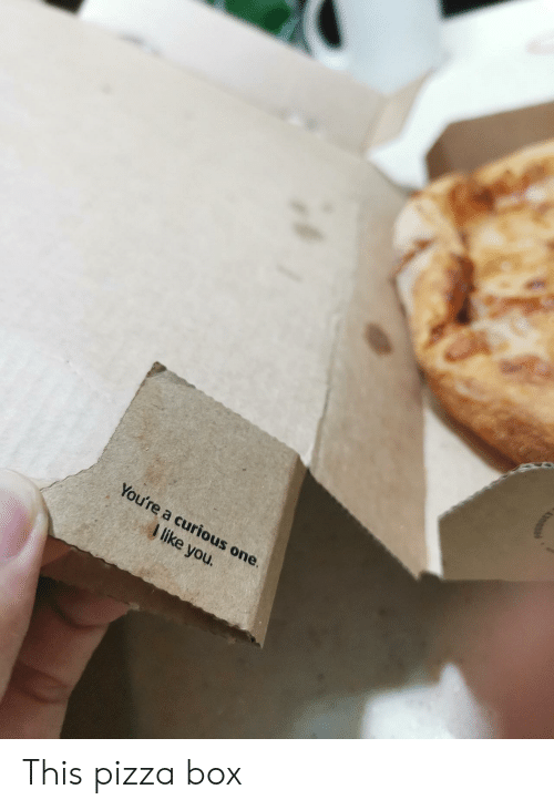 Pizza, Box, and One: You're a curious one.  I like you. This pizza box