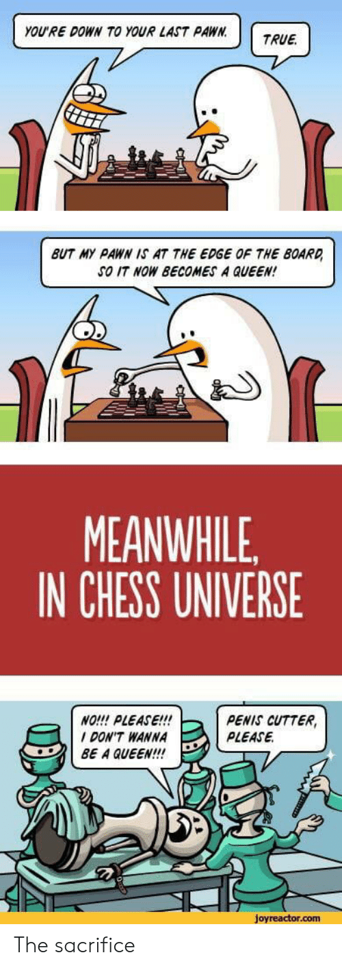 True, Queen, and Chess: YOU'RE DOWN TO YOUR LAST PAWN.  TRUE  BUT MY PAWN IS AT THE EDGE OF THE BOARD  SO IT NOW BECOMES A QUEEN!  MEANWHILE  IN CHESS UNIVERSE  NO!!! PLEASE!!!  DON'T WANNA  BE A QUEEN!!  PENIS CUTTER,  PLEASE  joyreactor.com The sacrifice