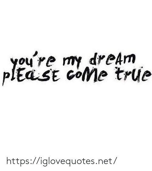 True, Net, and Dream: you're my dreAm  plEaSE cOMe true https://iglovequotes.net/