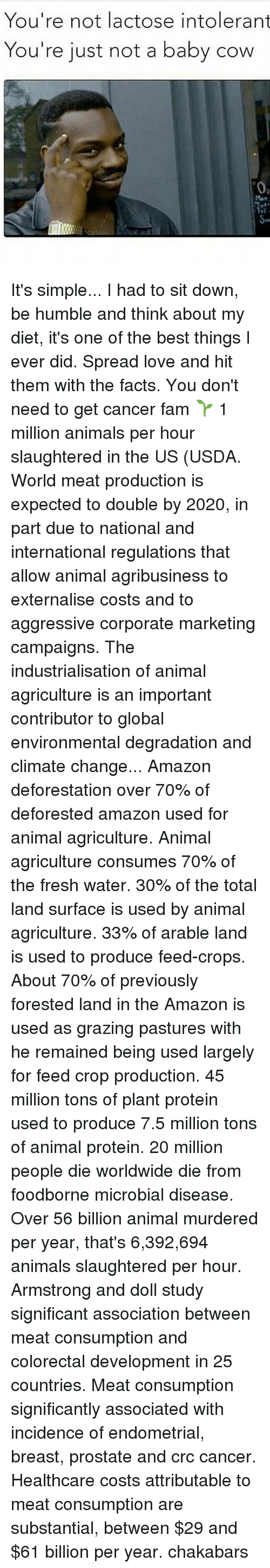 Cowe: You're not lactose intolerant  You're just not a baby cow  0a It's simple... I had to sit down, be humble and think about my diet, it's one of the best things I ever did. Spread love and hit them with the facts. You don't need to get cancer fam 🌱 1 million animals per hour slaughtered in the US (USDA. World meat production is expected to double by 2020, in part due to national and international regulations that allow animal agribusiness to externalise costs and to aggressive corporate marketing campaigns. The industrialisation of animal agriculture is an important contributor to global environmental degradation and climate change... Amazon deforestation over 70% of deforested amazon used for animal agriculture. Animal agriculture consumes 70% of the fresh water. 30% of the total land surface is used by animal agriculture. 33% of arable land is used to produce feed-crops. About 70% of previously forested land in the Amazon is used as grazing pastures with he remained being used largely for feed crop production. 45 million tons of plant protein used to produce 7.5 million tons of animal protein. 20 million people die worldwide die from foodborne microbial disease. Over 56 billion animal murdered per year, that's 6,392,694 animals slaughtered per hour. Armstrong and doll study significant association between meat consumption and colorectal development in 25 countries. Meat consumption significantly associated with incidence of endometrial, breast, prostate and crc cancer. Healthcare costs attributable to meat consumption are substantial, between $29 and $61 billion per year. chakabars