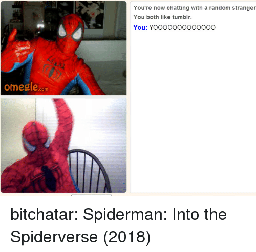 omegle: You're now chatting with a random stranger  You both like tumblr.  You: YOOOOO0OOOoO0O  omegle.com bitchatar: Spiderman: Into the Spiderverse (2018)