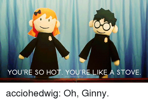 Youre So Hot: YOU'RE SO HOT. YOU'RE LIKE A STOVE  edung acciohedwig:  Oh, Ginny.